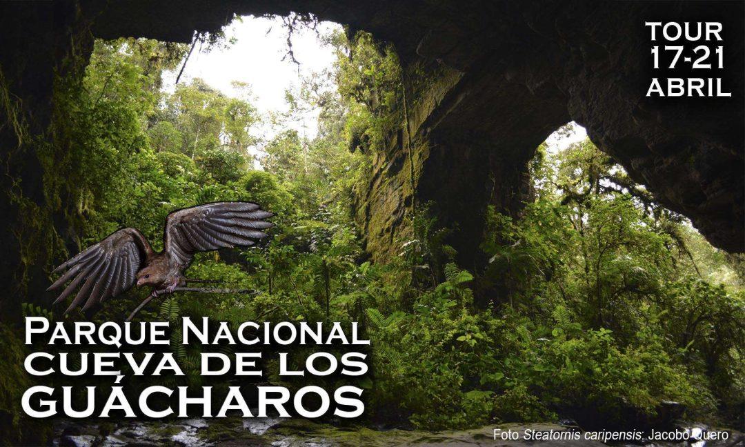 Parque-nacional-natural-cueva-de-los-guacharos-colombia-huila