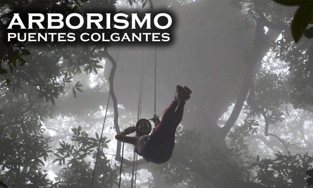 arborismo-puente-tibetano-bogota-cundinamarca-chicaque-makute