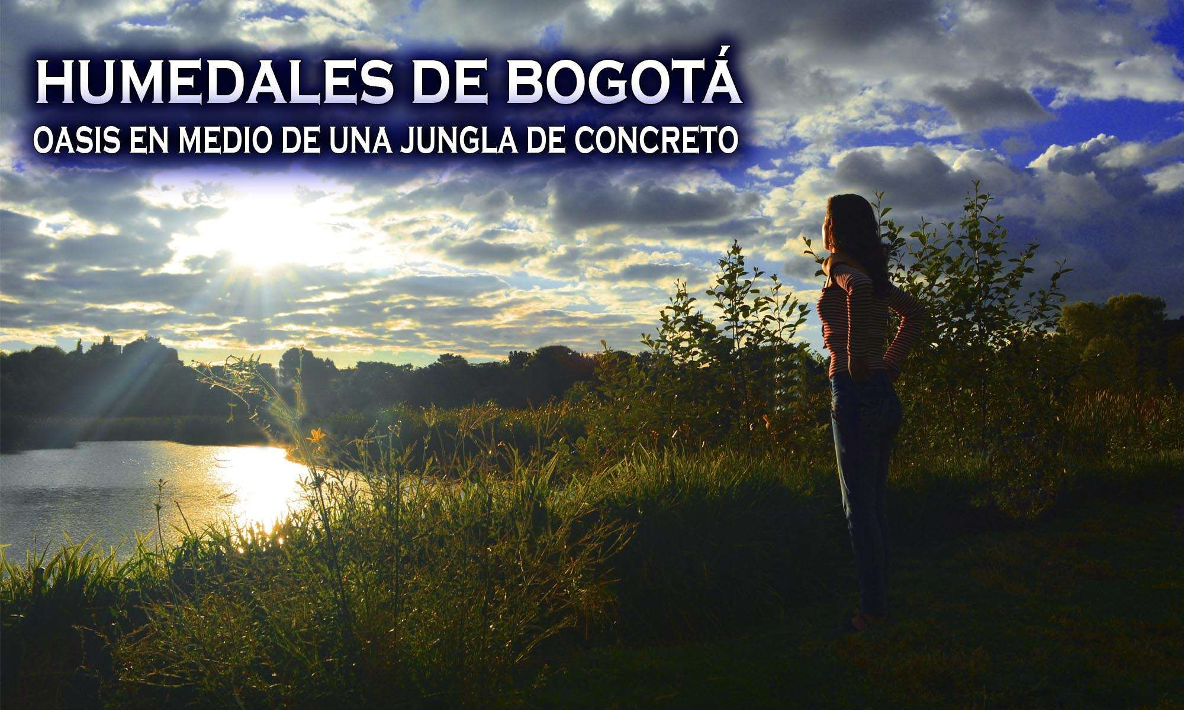 humedales de Bogota
