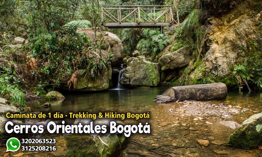 Caminatas ecológicas cerros orientales Bogota