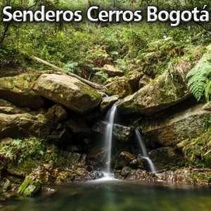 Senderos en los Cerros Orientales de Bogota