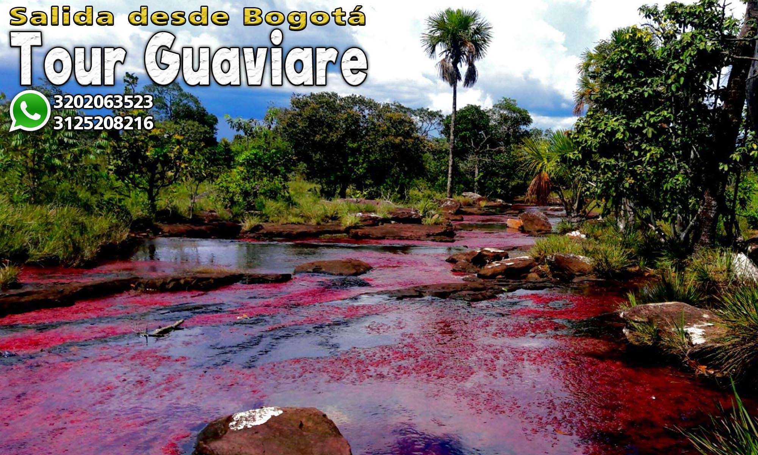 tour guaviare rio de colores puerta de orion viaje guaviare