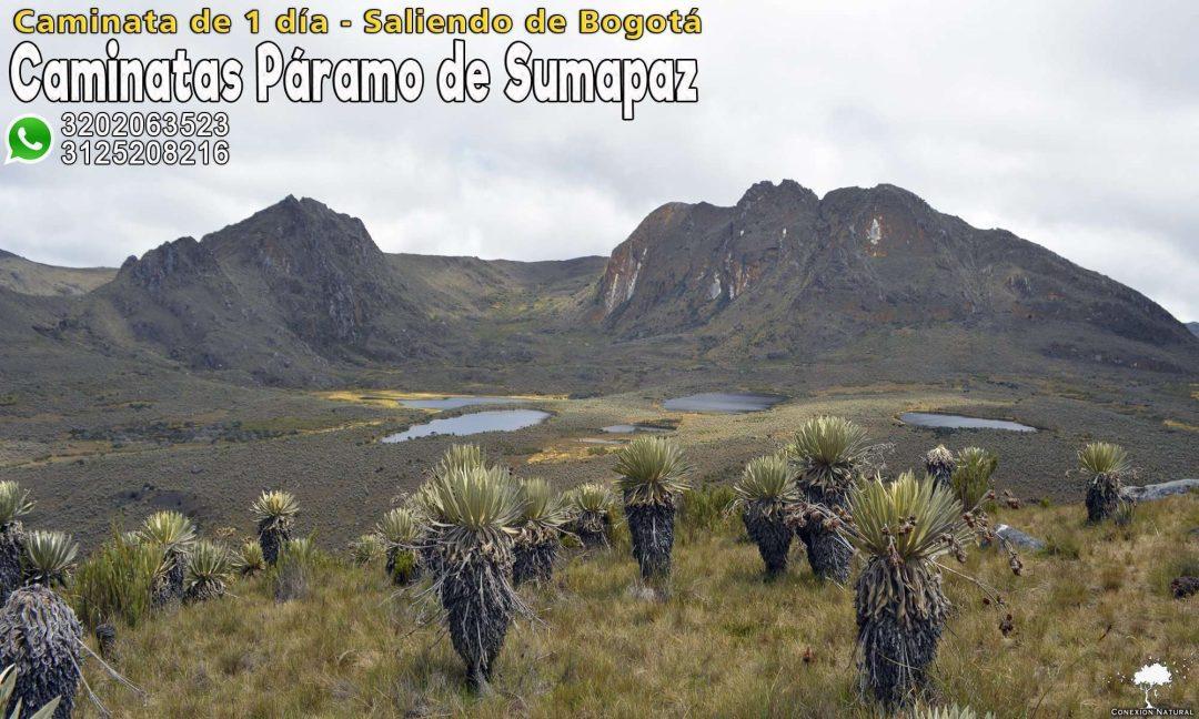 Caminata paramo de Sumapaz Tours al paramo de Sumapaz Ecoturismo paramo de Sumapaz Caminatas Ecologicas paramo de Sumapaz