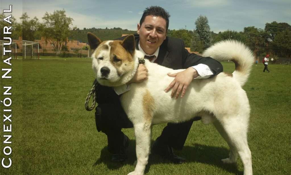 Planes con perros bogota Caminata canina Senderismo para perros bogota Caminatas ecológicas con perros Senderismo con perros