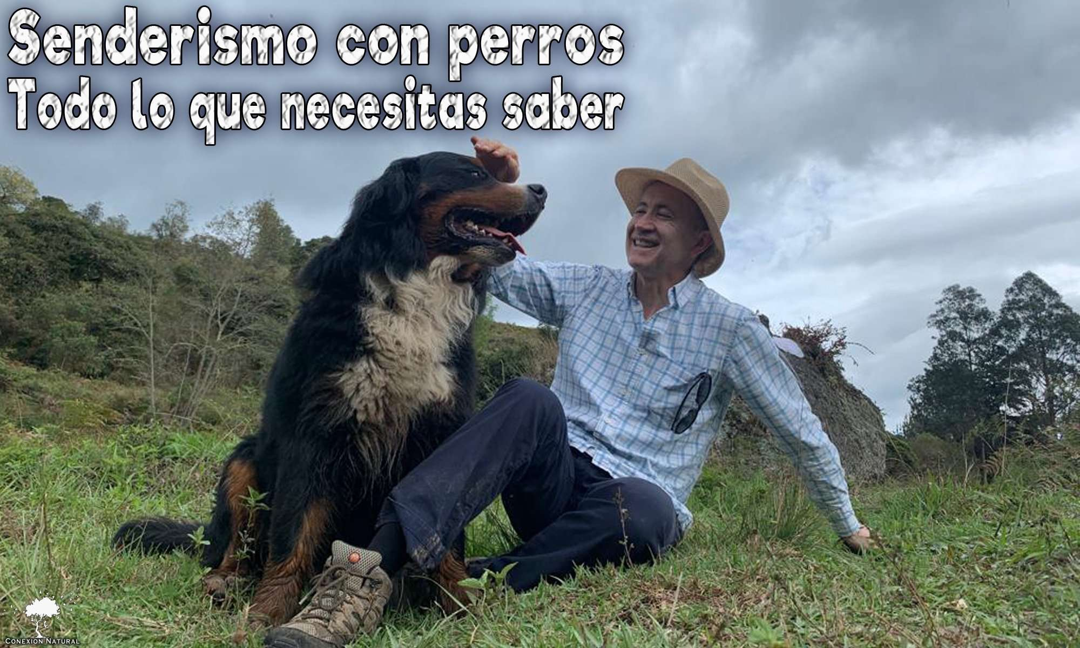 Planes con perros bogota Caminata canina Caminatas ecológicas con perros Senderismo con perros Caminatas con perros