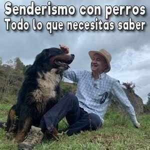 Caminatas con perros Bogotá todo lo que necesitas saber