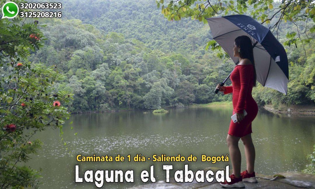 La Laguna el Tabacal la Vega Cundinamarca Laguna en la vega Laguna cerca de bogota Lagunas en Cundinamarca