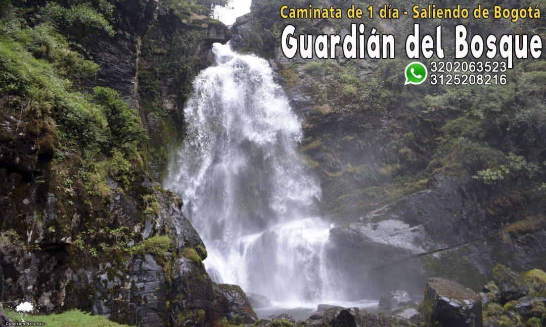 cascada del Guardián del bosque