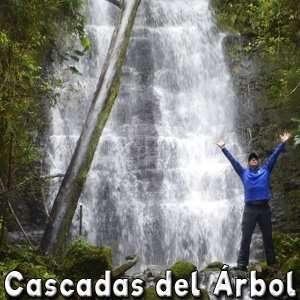 Cascada del Árbol - Caminata a CASCADAS cerca a Bogotá